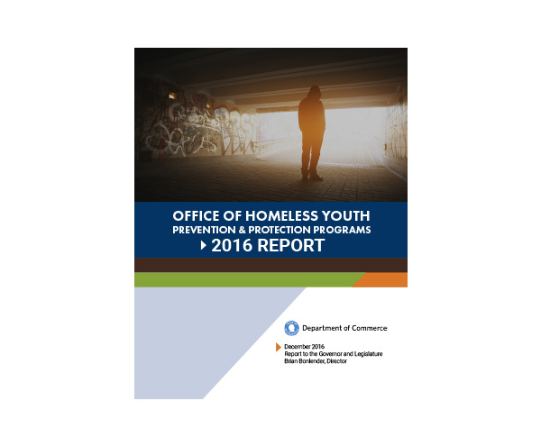 Office of homeless youth 2016 report campion for Bureau adolescent